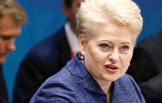 Prezidentė siūlo Seimui kelti atsakomybės už korupciją kartelę